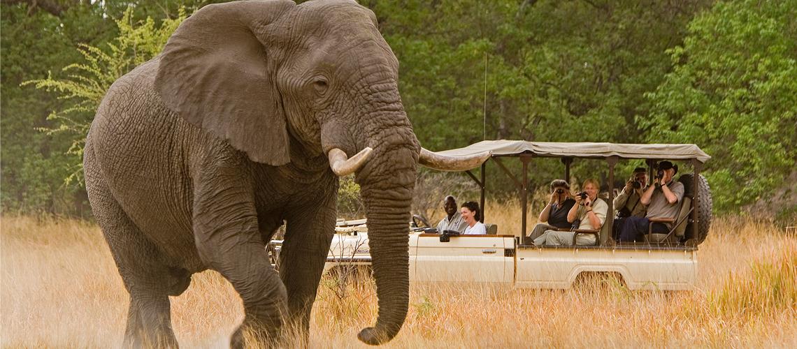 african-safaris1