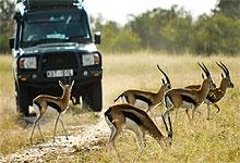 2 Days 1 Night Chyulu Hills National Park safari from Nairobi