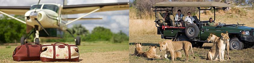 Zanzibar Selous Game Reserve 1 Day Flying Safari Package