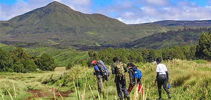 Mount Kenya Day Trip Hike Chogoria Route