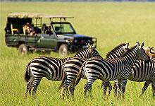 2 Days 1 Night Chyulu Hills National Park Fly-in Safari from Nairobi