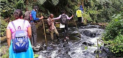 Gatamaiyu Riverine Walk Nairobi Day Tour