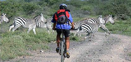 Hells Gate National Park Lake Naivasha 1 Day Tour