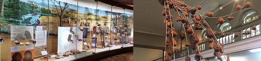 Nairobi National Museum Day Tour