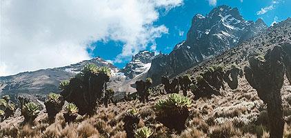Mount Kenya Climb 1 Day Hike Naro Moru Route