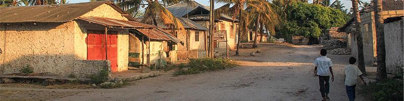 Zanzibar cultural day tour Jambiani village trip