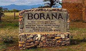 Borana conservancy