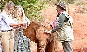 David & Daphne Sheldrick Wildlife Conservancies
