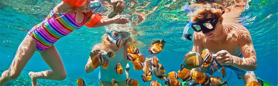 4 Days South Coast Mombasa Island Flying Safari Package
