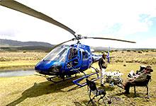 4 Days 3 Nights Kenya Helicopter Flying Safari Solio lodge - Desert Rose lodge - Sasaab lodge from Nairobi