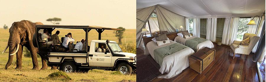 6 Days 5 Nights Kenya Fly-in Safari Masai Mara Game Reserve