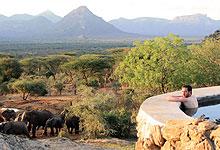 4 Days 3 Night Kitich Forest Camp Matthews Mountain Range Fly-in Safari from Nairobi