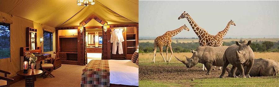 5 Days 4 Nights Kenya Fly-in Safari Sweetwaters Masai Mara